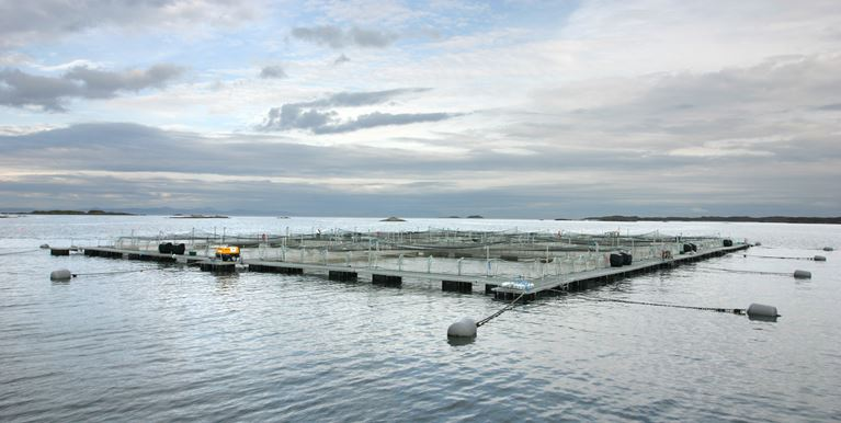 new-wavemaster-cages-in-scotland