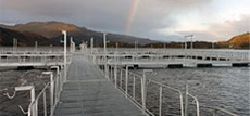 rainbow-trout-farming-chile