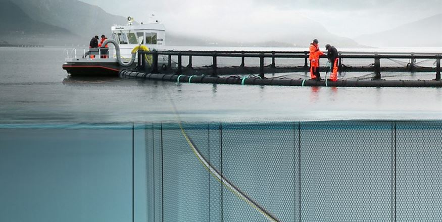 Net Cleaning Systems