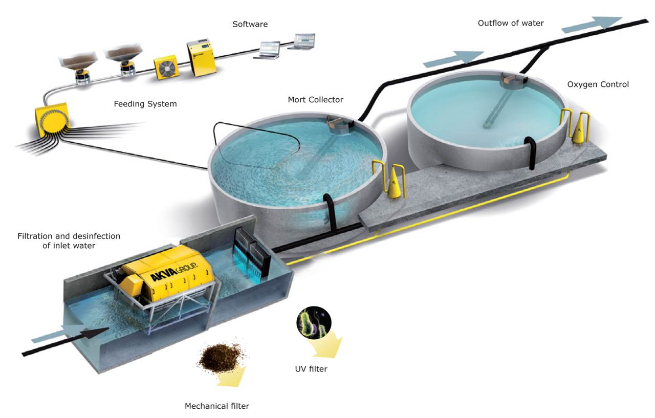 recycling aquaculture system Aquaculture and horticulture within a single recirculating aquaponic system  tanks with continuous recycling of water (bohl 1977.